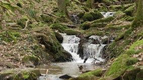 Ein Flussfluß/-wasserfall im Margarethenschlucht lizenzfreie stockfotografie