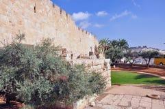 Altes Jerusalem der Tempelberg Stockfotografie