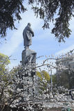 Ein Frühlingstag im Shevchenko-Park Stockbild