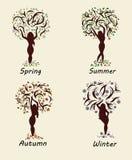 Ein Frauenbaum in vier Jahreszeiten Stockfotos