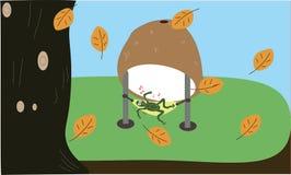 Ein Frosch unter Kokosschale lizenzfreies stockbild