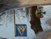 Ein Fußgängerübergangzeichen reflektierte sich in einer Pfütze Lizenzfreie Stockfotos