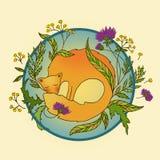 Ein Fuchs schläft lizenzfreie abbildung