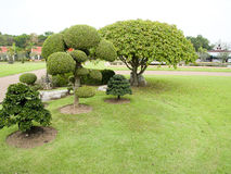 Ein Garten Lizenzfreies Stockbild