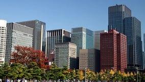 Ein Garten in der Mitte von Tokyo stock video