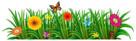 Ein Garten mit frischen blühenden Blumen, einem Schmetterling und einem Marienkäfer lizenzfreie abbildung