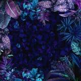 Ein Garten mit purpurroten Anlagen und exotischen Bäumen Stockbilder