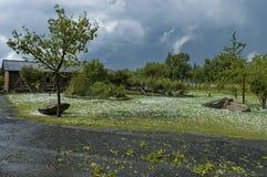 Ein Garten nach Hagelwetter Lizenzfreie Stockfotos