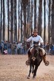 Ein Gaucho, das ein Pferd in der Ausstellung reitet Lizenzfreie Stockfotografie