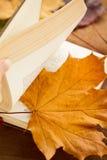 Ein geöffnetes Buch und ein Ahornblatt Stockbild