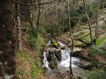 Ein Gebirgsfluss an Dirfys-Berg Stockbilder