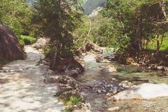 Ein Gebirgsfluss mit klarem Wasser Lizenzfreies Stockfoto