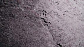 Ein gebrochener purpurroter Schiefer Boulder stockfotografie