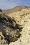 Ein Gedi峡谷在Judea沙漠。 免版税库存图片