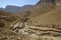 干燥沙漠旱谷。 免版税库存照片