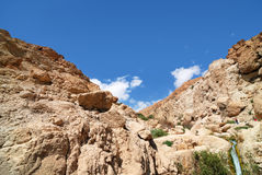 Ein gedi Royalty Free Stock Photography
