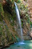 Ein gedi. Waterfall David in the national park Ein Gedi, Israel Royalty Free Stock Image