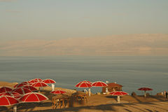 Ein gedi beach, dead sea, Israel. The other visible bank is in Jordan Royalty Free Stock Photography