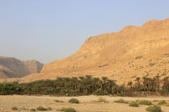 Ein Gedi in the Desert of Judea, Dead Sea, Holy Land Stock Photography