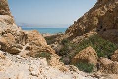 Ein Gedi, Dode Overzees, Israël Stock Fotografie