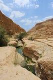 Ein Gedi, Judea öken i det heliga landet, Israel royaltyfria foton