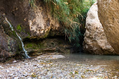 Ein Gedi, mer morte, Israël Photo stock