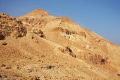 Ein Gedi nationalpark israel Arkivfoton