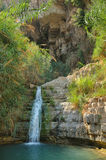 Ein Gedi Nature Reserve Stock Photography