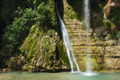 Ein Gedi Nature Reserve (Israel) Stock Image