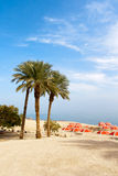 Ein Gedi oasis - Israel Stock Images