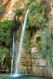 Ein Gedi rezerwat przyrody zdjęcia royalty free