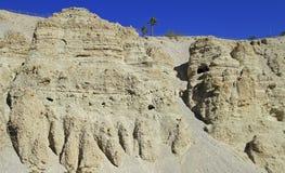 Ein Gedi - rezerwat przyrody i park narodowy Fotografia Royalty Free
