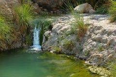 Ein Gedi rezerwat przyrody z wybrzeża Nieżywy morze Fotografia Royalty Free
