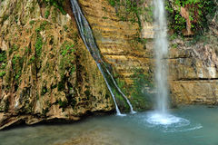 Ein Gedi Spring Royalty Free Stock Photo