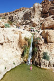 Ein Gedi Spring - Israel royalty free stock images