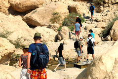 Ein Gedi Spring - Israel Stock Photos