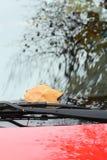 Ein gefallenes Herbstblatt auf einem roten Autofenster Stockfoto
