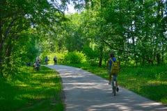 Ein Gehweg in einem Frühlingspark Lizenzfreie Stockfotos