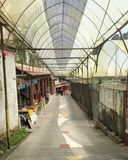 Ein Gehweg am Erdbeerbauernhof lizenzfreie stockbilder