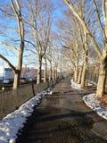 Ein Gehweg im Flussufer-Park Stockfotos