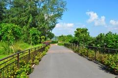 Ein Gehweg im Park Stockbild