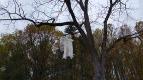 Ein Geist, der von einem Baum hängt Stockfotografie
