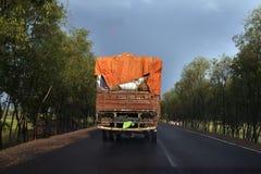 Ein geladener LKW in der Landstraße, Indien Stockbild