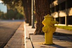 Ein gelber Hydrant nahe bei der Seite einer Straße während des Sonnenuntergangs im LA, Amerika stockfotografie