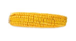 Ein gelber Maiskolben oder Mais lokalisiert auf weißem Hintergrund Stockfoto