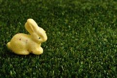 Ein gelbes Häschen für Ostern-Dekoration Lizenzfreie Stockfotografie