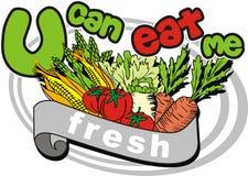 Ein Gemüse Lizenzfreies Stockfoto