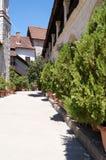 Ein gemütliches Yard mit Blumen und Bäumen in den Töpfen Plan des Plans europa Italienischer Patio Stockfotos