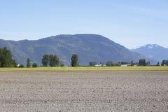Ein gepflogenes Feld im Fraser Tal Lizenzfreies Stockfoto