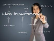 Ein Geschäftsfrau-Schreibensversicherungskonzept Lizenzfreies Stockfoto